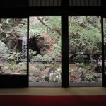 Kyoto-6037