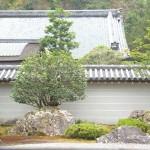 Kyoto-6100
