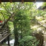 Kyoto-6117