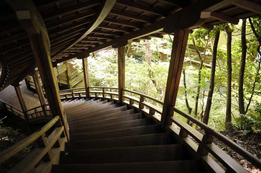 Kyoto-6177