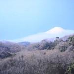 kamakura-5775