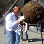 Kelheim2011-1190560